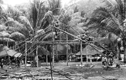 Alamo Scouts Training Center under construction Fergusson Island, New Guinea, December 1943.