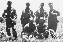Vickery Team Last Mission: Cagayan Valley, Luzon (July 1-7, 1945)